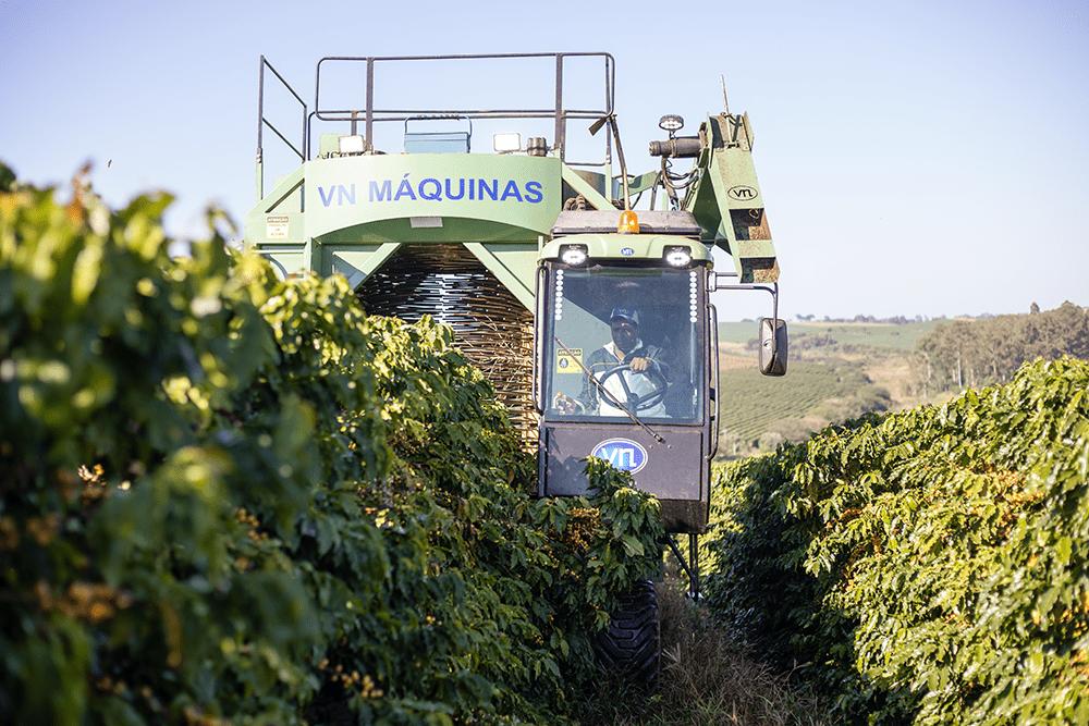 Colhedora de café vs 100 atuando nas lavouras da fazenda Ipanema